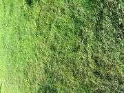 Продам участок СНТ Медик, Земельные участки в Конаково, ID объекта - 201217488 - Фото 1