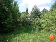 Продается участок, Новорижское шоссе, 20 км от МКАД - Фото 3