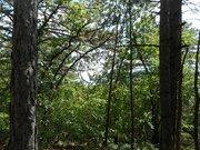7 соток Краснокаменка лесной участок