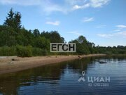 Продажа участка, Пошехонский район - Фото 1