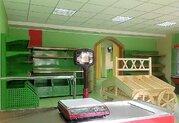 Продается торговое помещение, Пушкино г, Новая Деревня мкр, 86м2