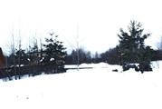 Участок в деревне Василево - Фото 2