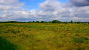 Земля с/х назначения в Октябрьском районе, Кочердык, оз. Соленое - Фото 5