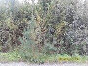 Участок 16,0 соток в кп «Эра» вблизи гор. Калязина Тверской области - Фото 1