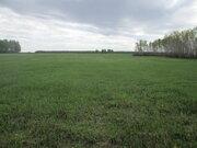 Земельный участок 9.4 гектар в экологически чистом районе - Фото 2