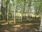 Участок 10 сот, 23 км Байкальского тракта