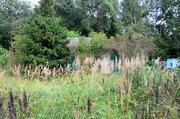 Чудесный участок у края леса в СНТ Цирк - Фото 3