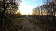 Два дома с хоз. постройками и баней на хуторе, 12 гектар земли - Фото 5