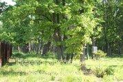 Продается участок. , Первомайское Город,, Купить земельный участок в Апрелевке, ID объекта - 202322801 - Фото 16