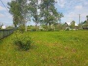 Продается дом с участком в д. Бабино - Фото 4