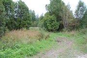 Продается земельный участок 49 соток в деревне Малинники. - Фото 2