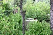 Земельный участок 7,3 сотки, ИЖС, Дмитровский район д.Игнатовка - Фото 5