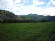 Элитный участок по р.Катунь, Чемал - Фото 3