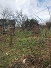 Лесной участок д.Варвариха - Фото 4