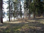 Продается участок 20 сот. , Новорижское ш, Осташево, 110 км. от . - Фото 3