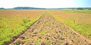 Продается участок 16 соток, 100 км от МКАД, д.Андреевское, Минское.ш - Фото 4
