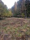 24 сотки у леса, Прописка, д. Маренкино - Фото 2