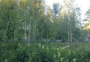 Продажа участка, Чехов, Чеховский район, Ул. Зеленая - Фото 3