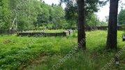 Киевское ш. 89 км от МКАД, Подсобное Хозяйство, Участок 14.42 сот. - Фото 4
