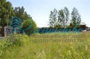 Продажа участка, Новолуговое, Новосибирский район, Новоселов ул. 1-я. - Фото 5