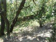 Продажа земельного участка 6 соток в Алупке. - Фото 5