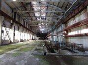 Продам производственное помещение, Продажа складских помещений Богандинский, Тюменский район, ID объекта - 900550010 - Фото 5