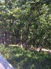 Продается земельный участок, с. Виноградовка, ул. Центральная