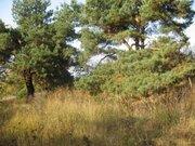 Земельный участок вблизи р.Ока - Фото 1