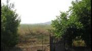 Продам дом с. Строгановка - Фото 3