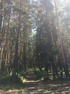 Земельные участки, ул. Сосновая, д.11 к.А - Фото 5