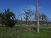 Продам земельный участок 6 соток в Керчи, Земельные участки в Керчи, ID объекта - 201789310 - Фото 3
