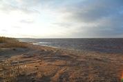 1 200 000 Руб., Участок с видом на озеро, Земельные участки в Гдовском районе, ID объекта - 201340000 - Фото 5