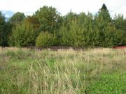 16 сот. в к\п Данилово-3 крайний к лесу. ярославское 37 км. от МКАД - Фото 3