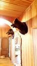 Продается действующий гостиничный комплекс «пено» на берегу Волги!, Готовый бизнес Пено, Пеновский район, ID объекта - 100059612 - Фото 10