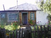 Дом в с.Зимино, Топчихинский район, 90 км от Барнаула - Фото 1