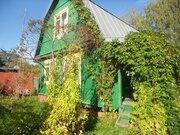 Недорогая, уютная дача в Павлово-Посадском районе! - Фото 2