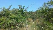 Участок в дск, Земельные участки в Севастополе, ID объекта - 201148476 - Фото 3