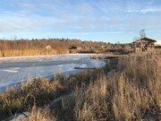 Участок 2,9 Га на 1 линии р. Сучок, граничит с лесом, д. Вахромеево. - Фото 4