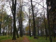 Продается участок 12,8 сот. в коттеджном поселке Тишково Парк - Фото 5