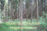 Продается участок. , Первомайское Город,, Купить земельный участок в Апрелевке, ID объекта - 202322801 - Фото 12
