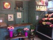 Сеть салонов цветов, Готовый бизнес в Москве, ID объекта - 100066388 - Фото 2
