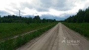 Участок в Ярославская область, Брейтовский район, с. Брейтово (235.0 . - Фото 2