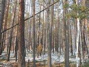 Продаю участок 15 сот ИЖС, в д. Новолисиха, 12 км Байкальского тракта