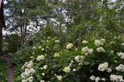 Продается Коттедж, Малая Дубна д. - Фото 5