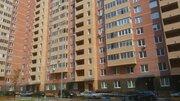 ЖК Новое Павлино квартира с евроремонтом, готова к проживанию - Фото 1