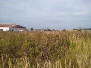 Участок 25 соток в деревне Покров, Чеховский район - Фото 3