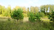 Продам участок в Кривцово - Фото 2
