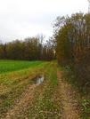 Продаю участок в деревни Лихачево - Фото 3
