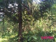 Земельные участки в Наро-Фоминском районе