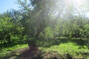 Ухоженный участок с садом и огородом - Фото 5